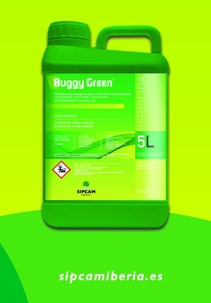 BUGGY GREEN_flyer_editable