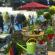 Feria Hortivation en ESSEN (Alemania). Un concepto exitoso de Feria innovadora para la promoción de ventas